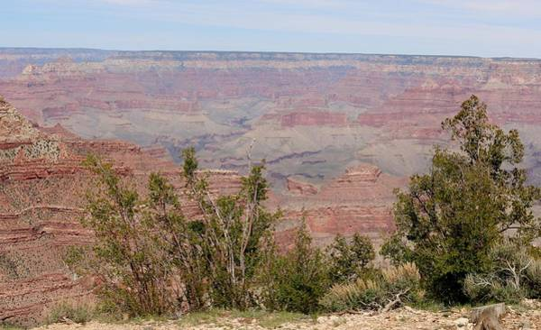 Photograph - Grand Canyon - 14 by Christy Pooschke