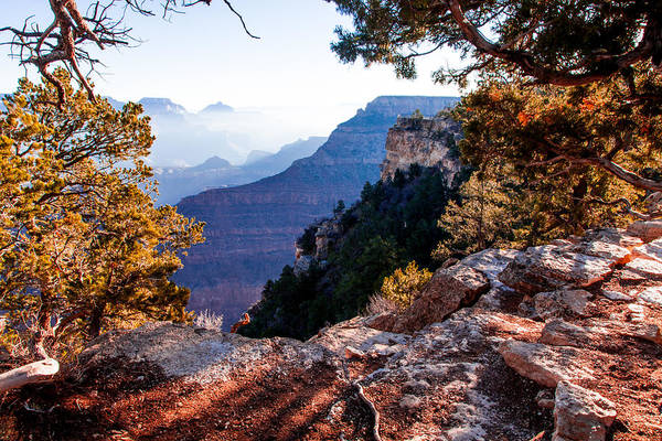 Photograph - Grand Canyon 26 by Donna Corless