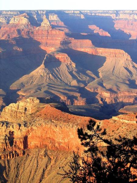 Awe Photograph - Grand Canyon 50 by Will Borden