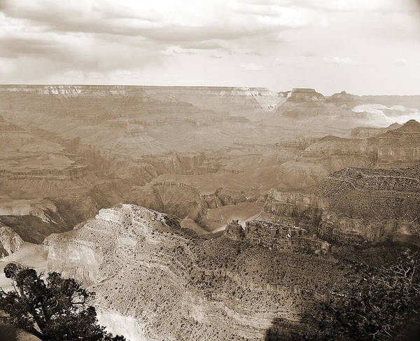 Photograph - Grand Canyon Arizona Fine Art Photograph In Sepia 3526.01 by M K Miller