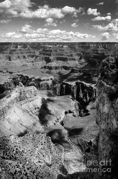 Wall Art - Photograph - Grand Canyon Bw by RicardMN Photography