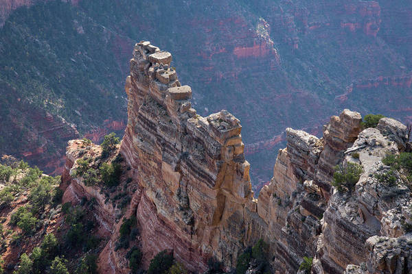 Photograph - Grand Canyon - Cape Royal 2 by Frank Madia