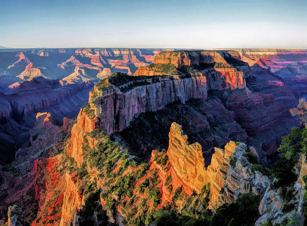 Painting - Grand Canyon Cape Royal by Christopher Arndt