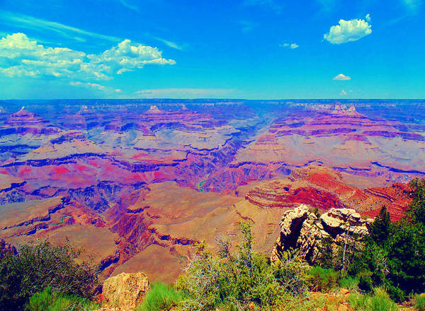 Photograph - Grand Canyon Eden by Michelle Dallocchio