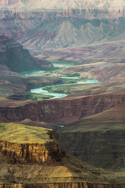 Photograph - Grand Canyon Grandview Point by Whit Richardson