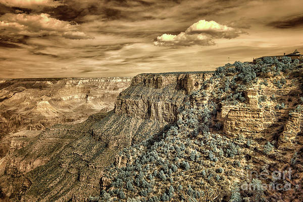 Mather Point Photograph - Grand Canyon In Infrared by Norman Gabitzsch
