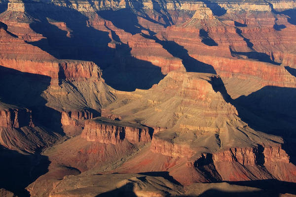 Photograph - Grand Canyon Light  by Aidan Moran