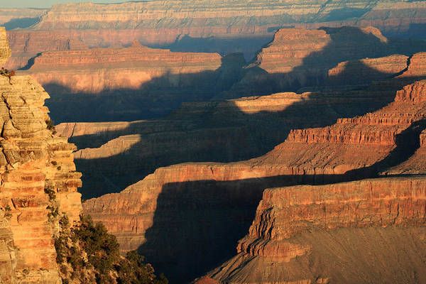 Photograph - Grand Canyon Morning Glow by Pierre Leclerc Photography