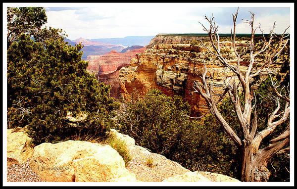 Grand Canyon National Park, Arizona Art Print