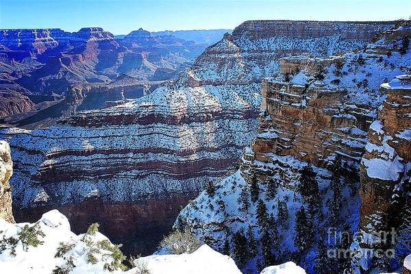 Photograph - Grand Canyon National Park In Winter by Jenny Revitz Soper