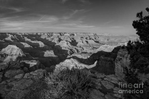 Mather Point Photograph - Grand Canyon National Park Spring Sunset Bw by Wayne Moran