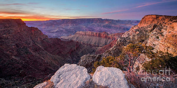 Wall Art - Photograph - Grand Canyon National Park by Twenty Two North Photography