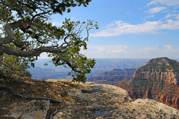Photograph - Grand Canyon North Rim Craggy Cliffs by Victoria Oldham