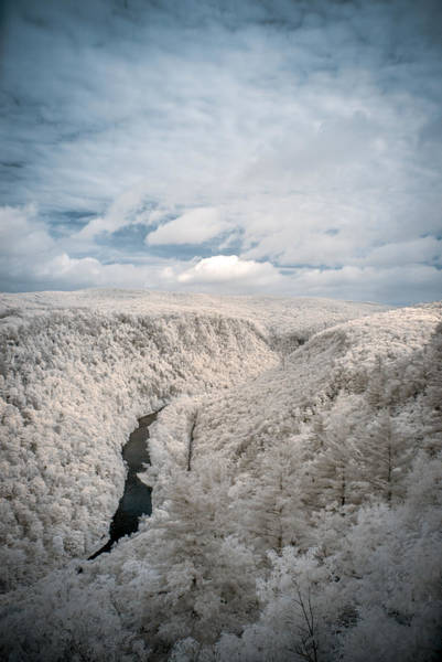 Photograph - Grand Canyon Of Pa In Infrared by Guy Whiteley