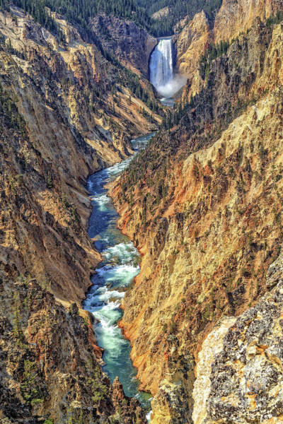 Wall Art - Photograph - Grand Canyon Of The Yellowstone by Edward Fielding