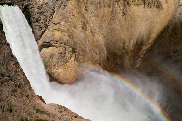 Photograph - Grand Canyon Of The Yellowstone II by Clarence Holmes