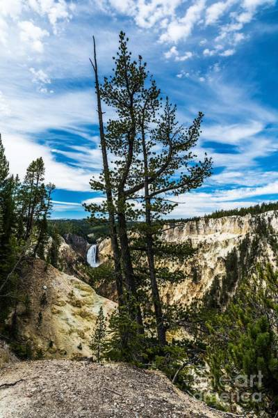 Photograph - Grand Canyon Of The Yellowstone by Mel Steinhauer
