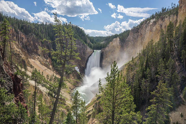 Photograph - Grand Canyon Of Yellowstone by Alpha Wanderlust