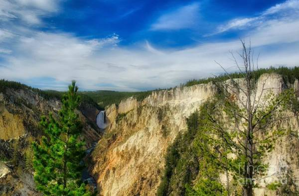 Photograph - Grand Canyon Of Yellowstone National Park by Mel Steinhauer
