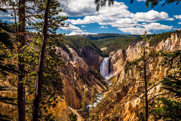Yellowstone Canyon Photograph - Grand Canyon Of Yellowstone by Scott Law