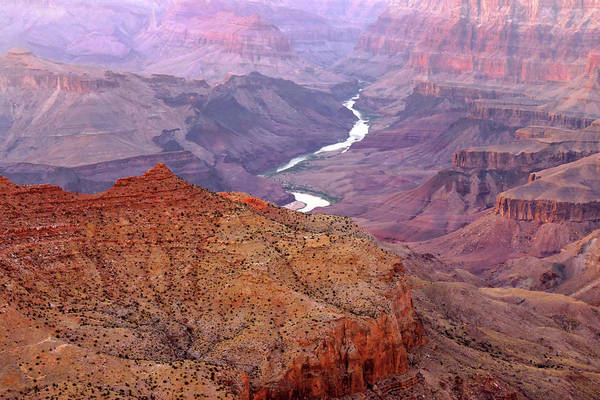 Photograph - Grand Canyon River View by Grace Dillon