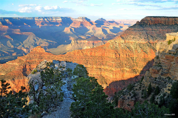 Photograph - Grand Canyon South Rim At Sunset by Victoria Oldham