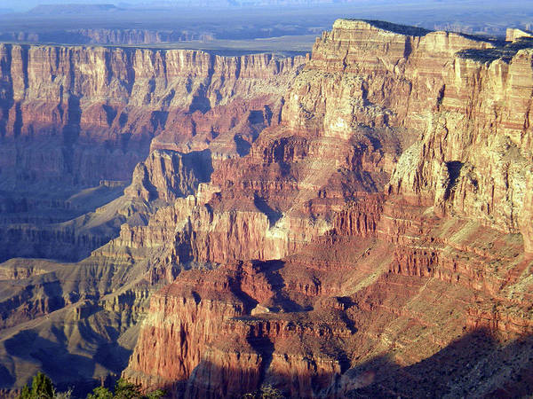 Photograph - Grand Canyon South Rim by Norman Hall