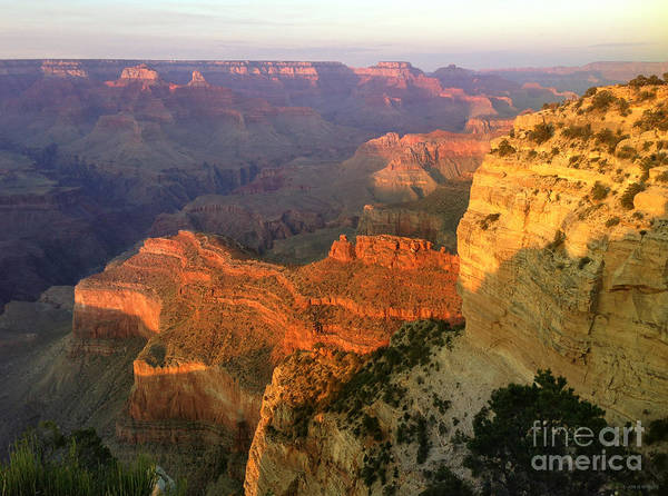 Painting - Grand Canyon Sunset by JQ Licensing