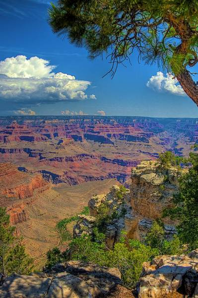 South Rim Photograph - Grand Canyon Vista by William Wetmore
