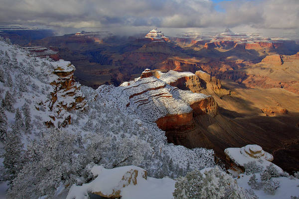 South Rim Photograph - Yaki Point In Snow by Mike Buchheit