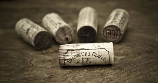 Wine Tasting Photograph - Grand Cru Classe by Frank Tschakert