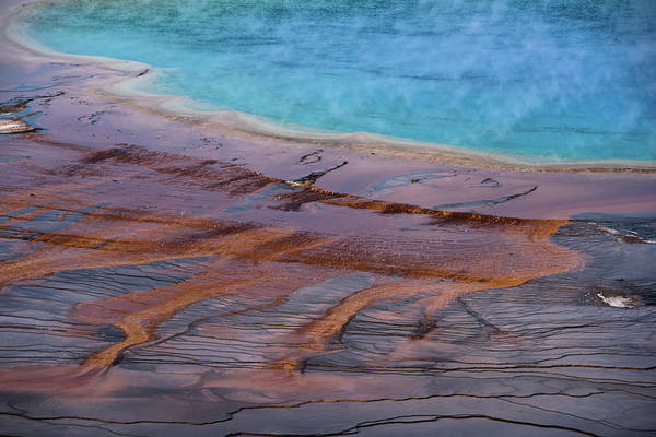 Photograph - Grand Prismatic Spring Detail by Jennifer Ancker