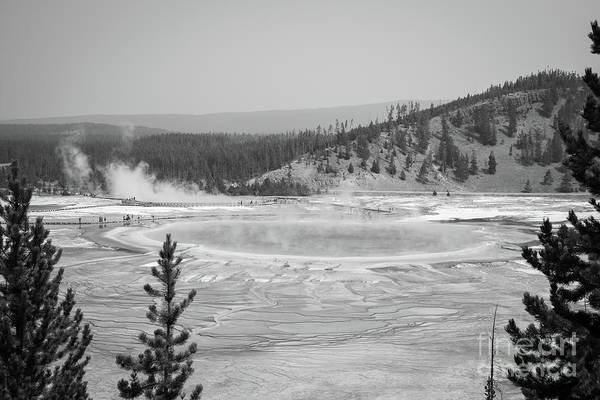 Prismatic Wall Art - Photograph - Grand Prismatic Spring From A High Point Bw by Michael Ver Sprill