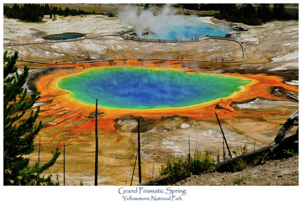 Art Print featuring the photograph Grand Prismatic Spring by Greg Norrell