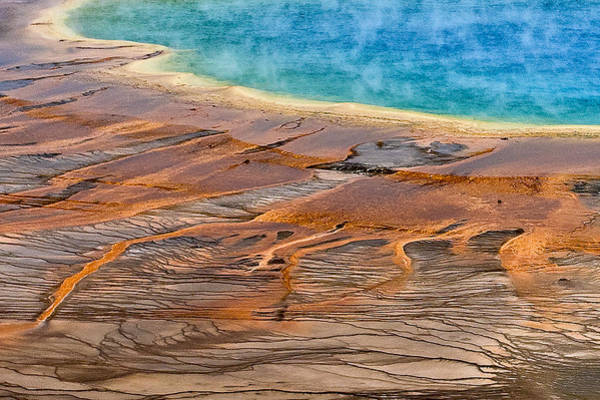 Photograph - Grand Prismatic Spring by Ken Barrett