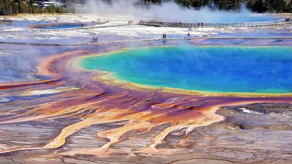 Photograph - Grand Prismatic Spring by Tranquil Light Photography