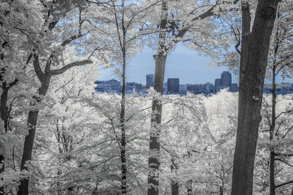 Photograph - Grand Rapids Michigan Cityscape In Infrared by Randall Nyhof