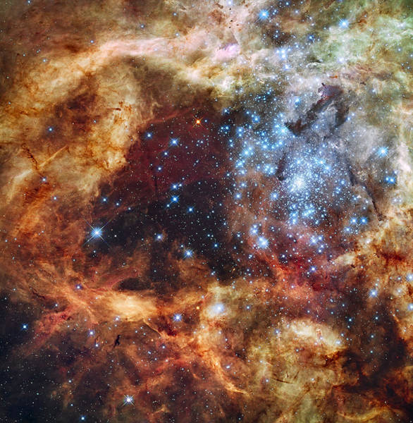 Hubble Telescope Photograph - Grand Star Forming - A  Stellar Nursery by Mark Kiver