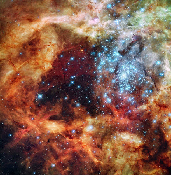 Photograph -  Grand Star-forming Region R136 In Ngc 2070 by NASA and the European Space Agency