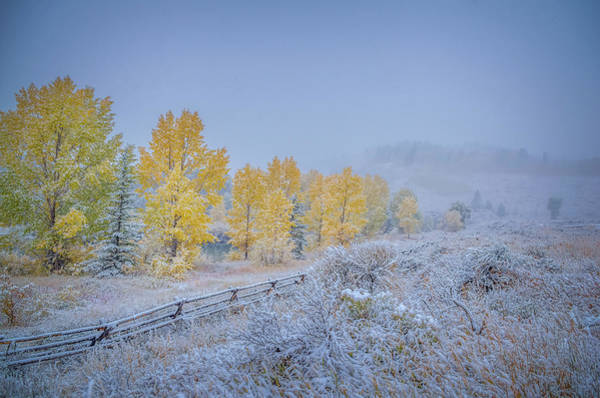 Wall Art - Photograph - Grand Teton Fall Snowfall Scene by Scott McGuire