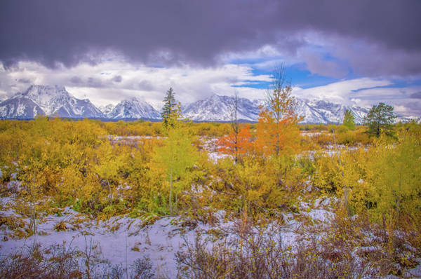 Photograph - Grand Teton Fall Snowfall by Scott McGuire