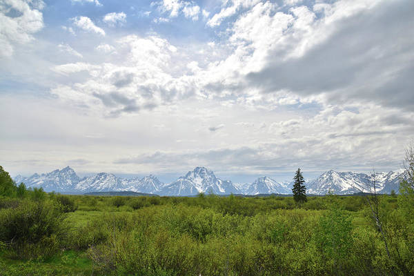 Photograph - Grand Teton National Park In Wyoming by Ray Mathis
