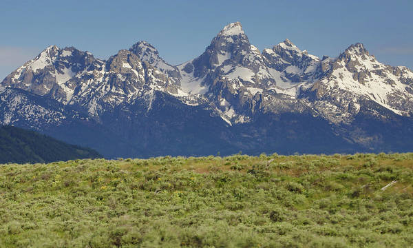 Photograph - Grand Teton National Park Vista by Dan Sproul