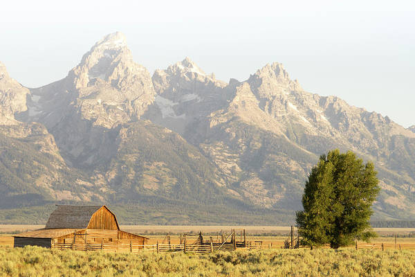 Wall Art - Photograph - Grand Teton by Peter Irwindale