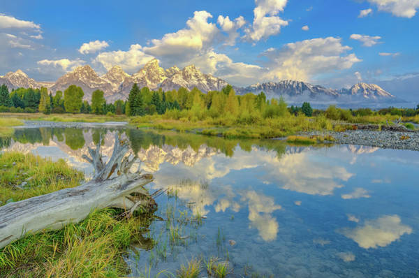 Wall Art - Photograph - Grand Teton Riverside Morning Reflection by Scott McGuire