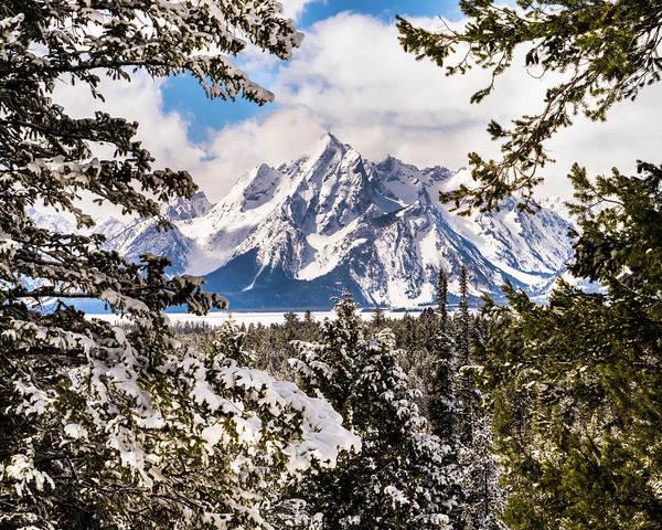 Photograph - Grand Teton Through The Pines Horizontal by TL Mair