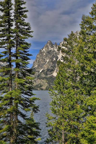 Photograph - Grand Tetons From Jenny Lake by Dan Sproul