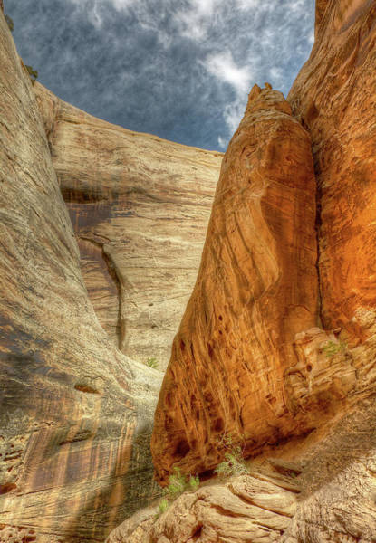 Photograph - Grand Wash Narrows, Capital Reef Np, Utah by Michael Kirk