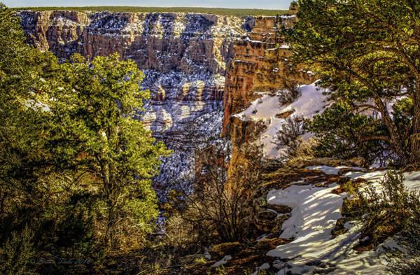 Photograph - Grandview Winter At Grand Canyon by Brian Tada