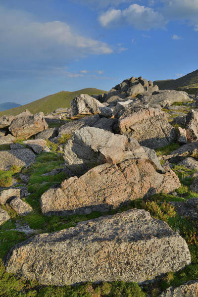 Photograph - Granite Boulders Along Mt. Evans Scenic Byway by Ray Mathis